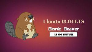 Ubuntu 18-04 LTS Beaver